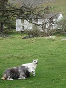 Rock Climbing Photo: Farm house near the Church of St Martins .. Martin...