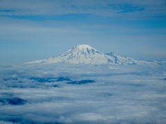 Rock Climbing Photo: Mt Rainier from Mt. Adams.