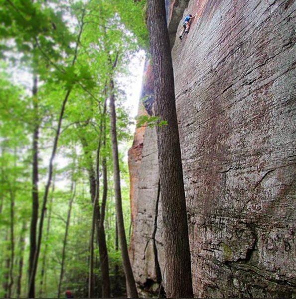 Rock Climbing Photo: Climbing JuJu