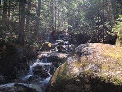 Rock Climbing Photo: Gibbs Brook near the cliff.