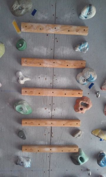 Rock Climbing Photo: Metolius campus rails