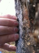 Rock Climbing Photo: The small right hand starting crimp... it is wicke...