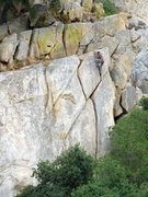 Rock Climbing Photo: Climber topping out on The Y Crack (5.7), Dixon La...