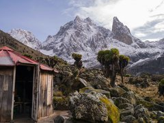 Rock Climbing Photo: Mt Kenya after fresh snow