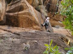 Rock Climbing Photo: A Fish on a rock
