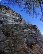 Rock Climbing Photo: Sentinel Buttress