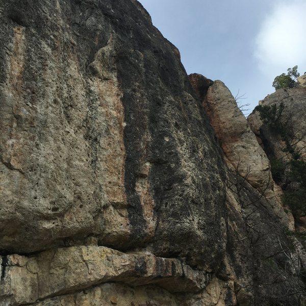Rock Climbing Photo: Black Russian