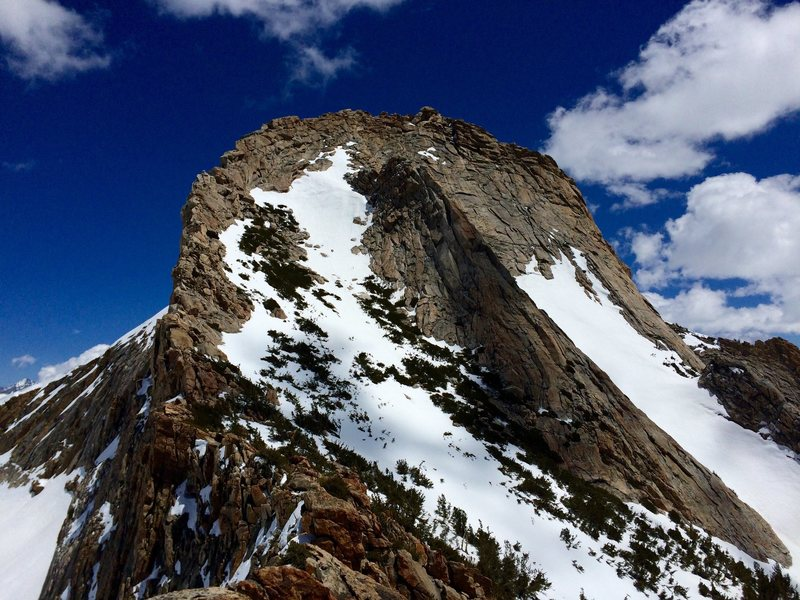 Mt Clark's scooped out summit bowl, with the NW arete on the left