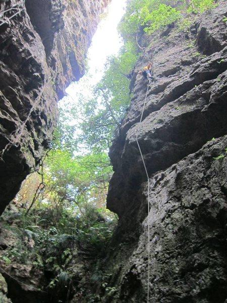Rock Climbing Photo: Taiwanese Limestone.