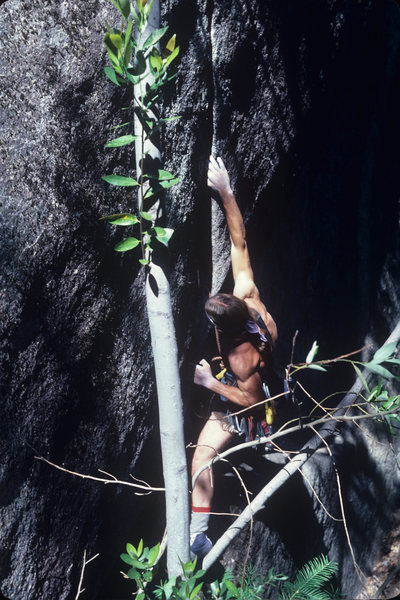 Rock Climbing Photo: CD