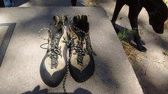Rock Climbing Photo: Shoes3
