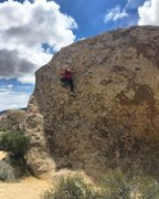 Rock Climbing Photo: Hidden Valley JTree