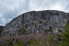 Rock Climbing Photo: Sir Wallface.