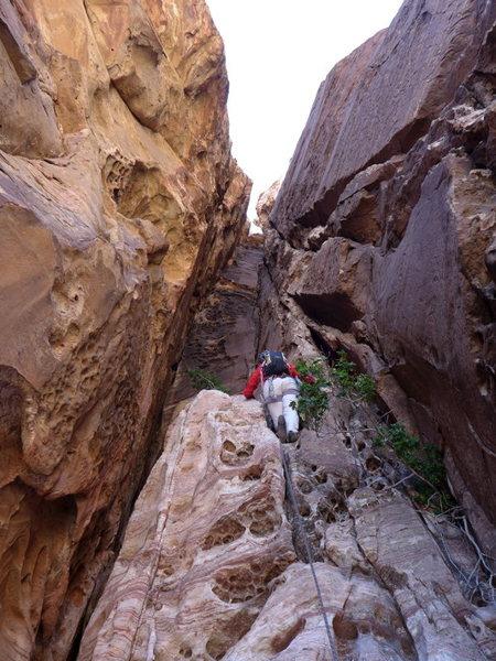 Rock Climbing Photo: p4, the honeycomb chimney pitch