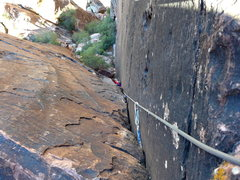 Rock Climbing Photo: Ivy in the flared chimney part of p7