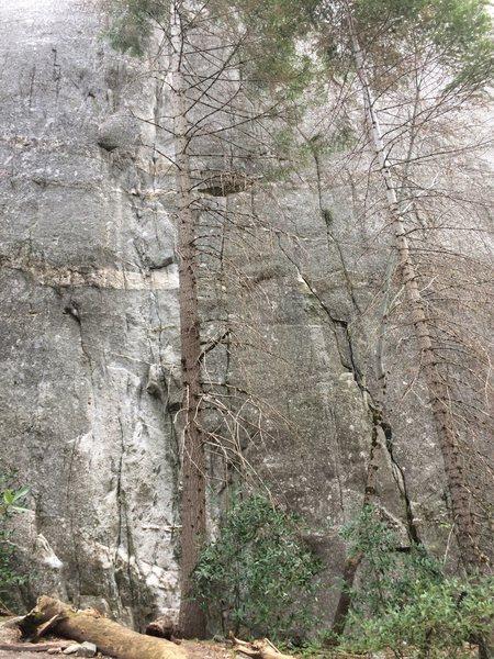 Rock Climbing Photo: Double dragon