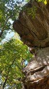 Rock Climbing Photo: Spread your Eagle