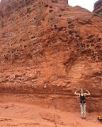 Rock Climbing Photo: Climbing at the Chuckwalla Wall in St. George.
