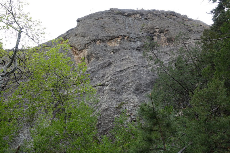 The crag above the approach trail approximately one mile from the trailhead that has several unknown bolt lines.