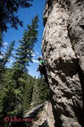 Rock Climbing Photo: Juvenile  Photo by Luke Ross