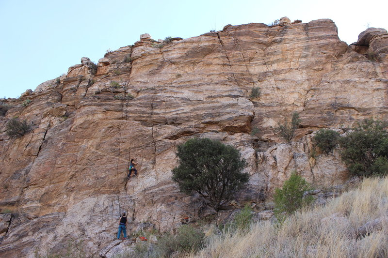 Rock Climbing Photo: Tiff enjoying the Ambiguity