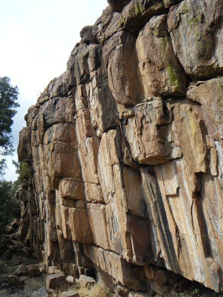 Whipper Wall