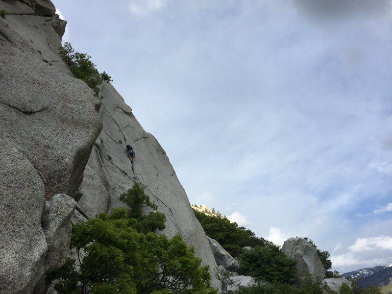 Rock Climbing Photo: Lemon leading his name sake.