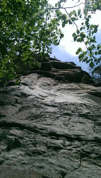 Looking up on Stinky Pinky, the white wall (most distinctive feature) is past a ledge, which leads straight to the top.  The beginning follows a crack up to the left side of the ledge, with a tree growing a couple feet away from the start.