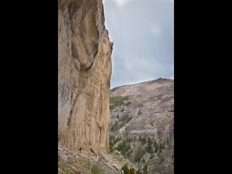Rock Climbing Photo: It's pretty tall!  Photo by Sam Lightner, Jr.