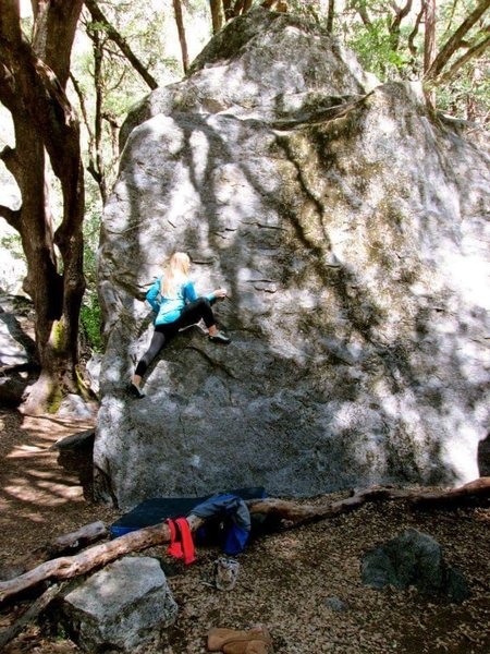 Rock Climbing Photo: Bouldering in Yosemite