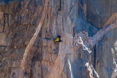 Rock Climbing Photo: Working the Hallucinogen Wall