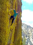 Rock Climbing Photo: SOBDSAYP sending the Green Flash Direct!!!