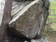 Rock Climbing Photo: Autopsy, V6, starts next to the tree and climbs th...