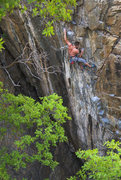 "Rock Climbing Photo: Dono working the upper moves on ""Karmic Whipl..."