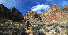 Rock Climbing Photo: Black Velvet Canyon