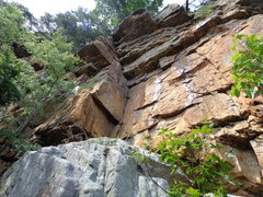 Rock Climbing Photo: A look from ground with leaves