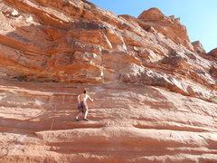Rock Climbing Photo: A 5.10.
