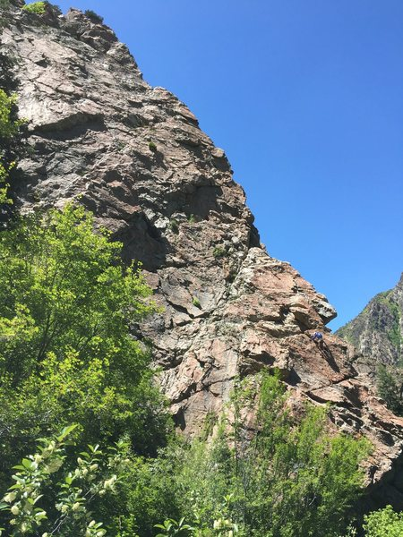 Rock Climbing Photo: Unknown climber I saw on our way down from Glass O...