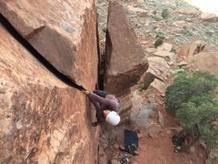 Rock Climbing Photo: Eli on the splitter hands