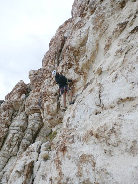 Rock Climbing Photo: Ibex