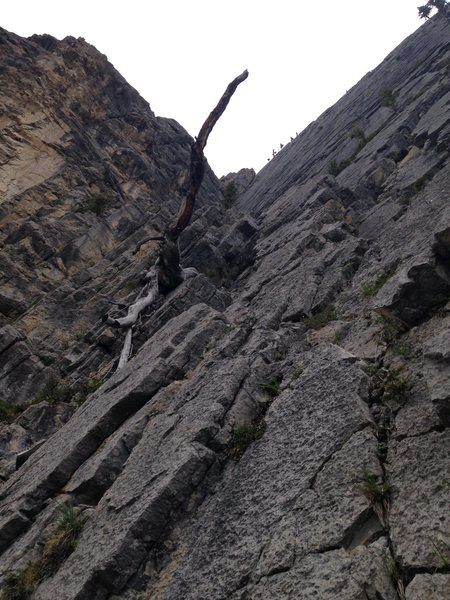 Looking up at pitch 1