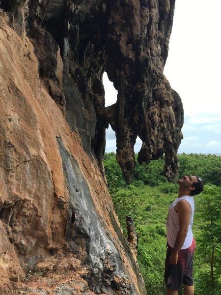 Rock Climbing Photo: Stalactites at Sector Jerry