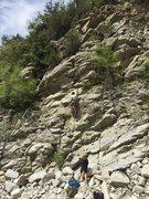 Rock Climbing Photo: The grinningmango on lead; The Win'o