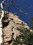 Rock Climbing Photo: Easy peasy back into Estrellita to finish