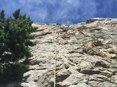 Rock Climbing Photo: Baby Doe 2014 6-15 Monitor Rock
