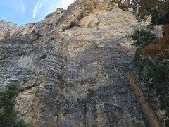 Rock Climbing Photo: Weakness