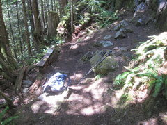 Rock Climbing Photo: Bench area below the main part of Cobblestone Wall...
