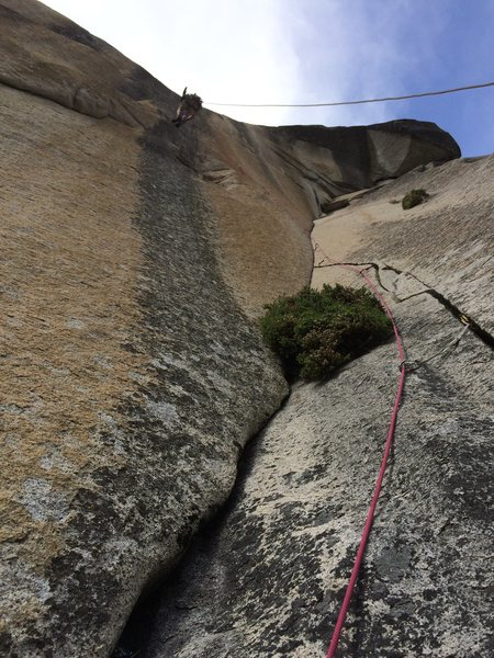Rock Climbing Photo: High on the rivet ladder of pitch 5