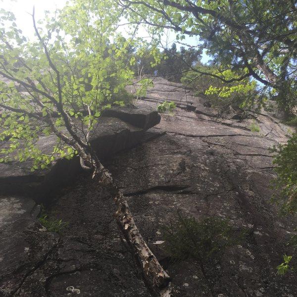 Rock Climbing Photo: Deet-less Dirtbags