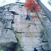 Rock Climbing Photo: Brave New World, 5.12a